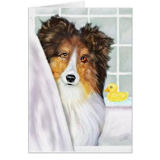 Sable Sheltie Bath Greeting Card