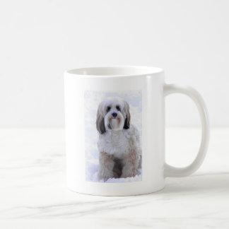 Sable y blanco de Terrier tibetano Tazas De Café