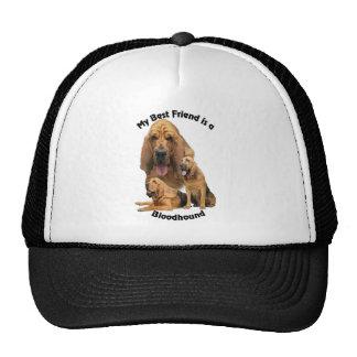 Sabueso del mejor amigo gorras