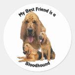 Sabueso del mejor amigo pegatinas redondas