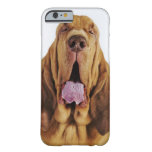 Sabueso (perro del St. Huberto) con los ojos Funda De iPhone 6 Barely There