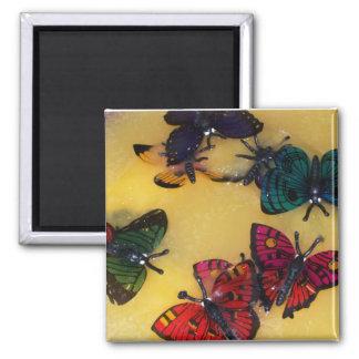 Sacador de la mariposa imán para frigorifico
