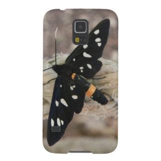 Sacerdote de las mariposas carcasa de galaxy s5