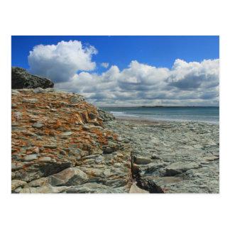 Sachuest Beach Newport Middletown Postcard