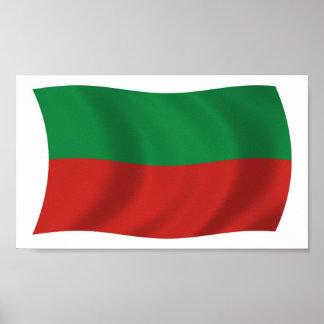 Saco y impresión del poster de la bandera de la na