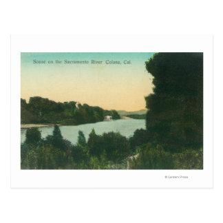 Sacramento River SceneColusa, CA Postcard