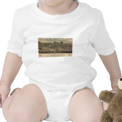 sacramento tshirt