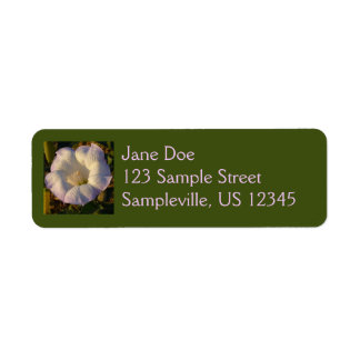 Sacred Datura Flower Desert Wildflower Label