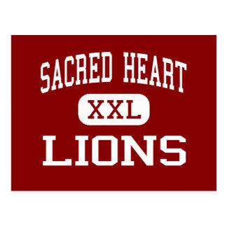 Sacred Heart - Lions - High - Vineland New Jersey Postcard