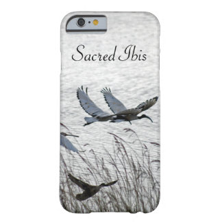 Sacred ibises in flight barely there iPhone 6 case