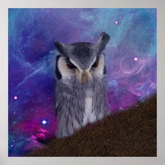 Sacred owl and fantasy sky poster