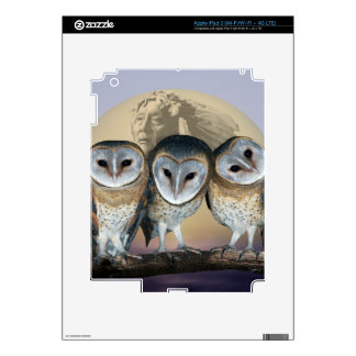 Sacred Owl North American Indian iPad 3 Decals