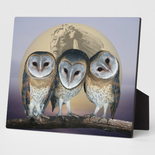 Sacred Owl North American Indian Plaque