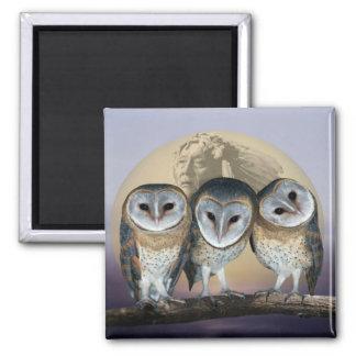Sacred owls magnets