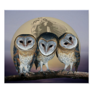 Sacred owls poster
