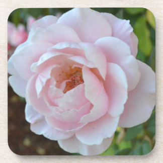 Sacred Rose Beverage Coaster