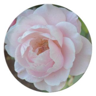 Sacred Rose Melamine Plate