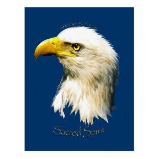 SACRED SPIRIT Bald Eagle Postcard