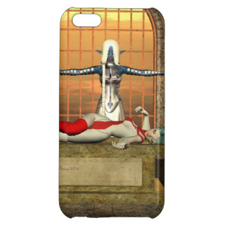 sacrifice iPhone 5C cases