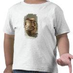 Sacuda, de la provincia de Gansu, c.1300-700 A.C. Camiseta