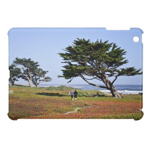 Sacudida de la mañana en Monterey