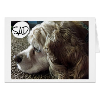 SAD AND BLUE THINKING OF ALL WE USED TO DO CARD