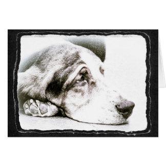 Sad Basset Hound Card