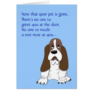 Sad Basset Hound Funny Dog Sympathy Loss of Pet