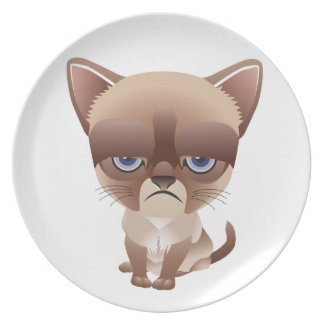 Sad Cat Melamine Plate
