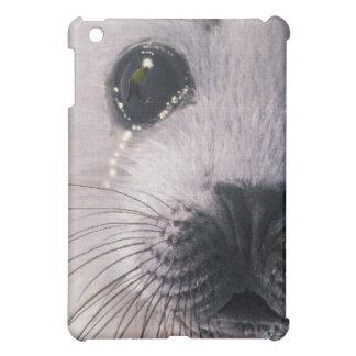 Sad Crying Baby Harp Seal & Sealhunter iPad Case