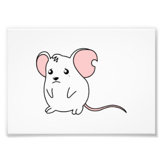 Sad Crying Weeping White Mouse Pillow Button Pin Photo Art