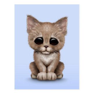 Sad Cute Beige Kitten Cat on Blue Postcard