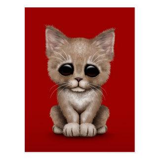 Sad Cute Beige Kitten Cat on Red Postcard