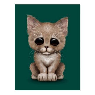 Sad Cute Beige Kitten Cat on Teal Blue Postcard