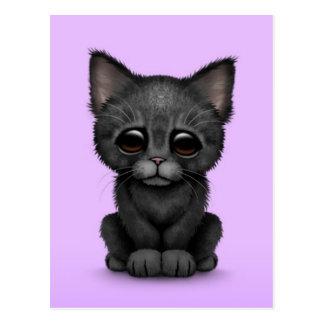 Sad Cute Black Kitten Cat on Purple Postcard