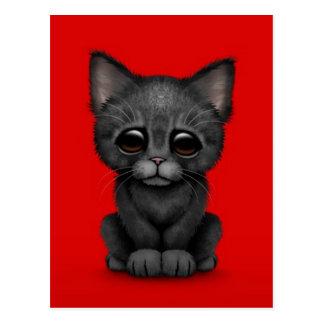Sad Cute Black Kitten Cat on Red Postcard