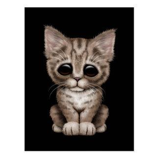 Sad Cute Brown Tabby Kitten Cat on Black Postcard