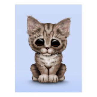 Sad Cute Brown Tabby Kitten Cat on Blue Postcard