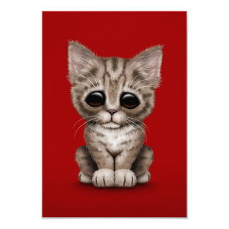 Sad Cute Brown Tabby Kitten Cat on Red Card