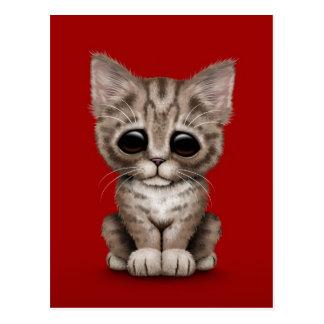 Sad Cute Brown Tabby Kitten Cat on Red Postcard