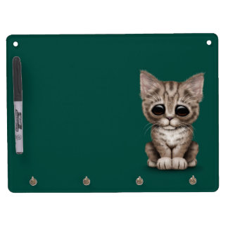 Sad Cute Brown Tabby Kitten Cat on Teal Blue Dry Erase Whiteboard