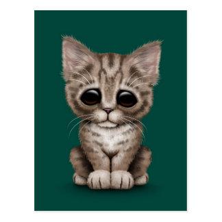 Sad Cute Brown Tabby Kitten Cat on Teal Blue Postcard