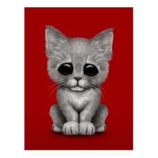 Sad Cute Gray Kitten Cat on Red Postcard