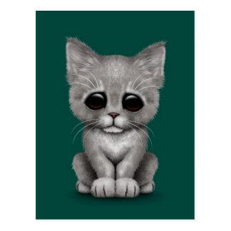 Sad Cute Gray Kitten Cat on Teal Blue Postcard
