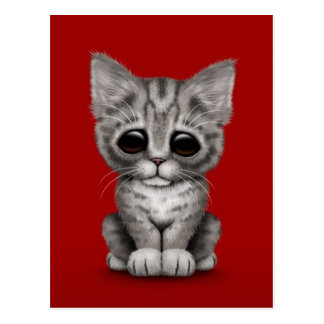 Sad Cute Gray Tabby Kitten Cat on Red Postcard