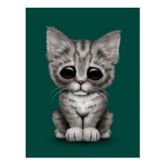 Sad Cute Gray Tabby Kitten Cat on Teal Blue Postcard
