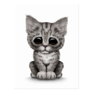 Sad Cute Gray Tabby Kitten Cat on White Postcard