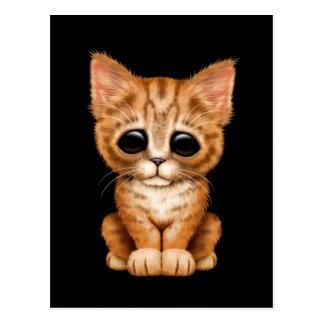 Sad Cute Orange Tabby Kitten Cat on Black Postcard