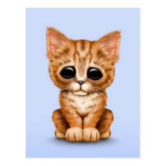 Sad Cute Orange Tabby Kitten Cat on Blue Postcard