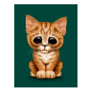 Sad Cute Orange Tabby Kitten Cat on Deep Green Postcard